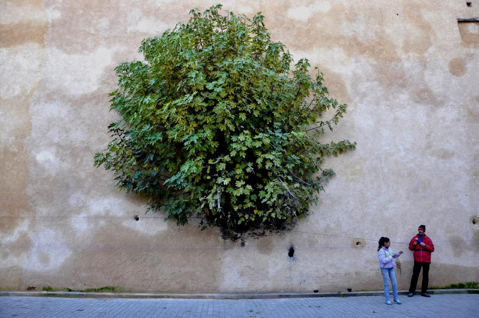 Rencontres Photographiques de Rabat 2018 – Communiqué de presse