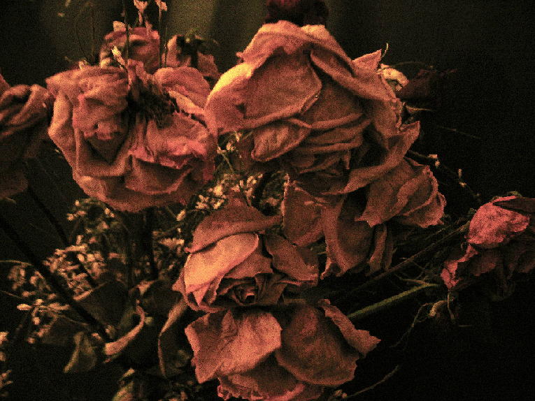 Nature morte 5, Fouzia ALAMI